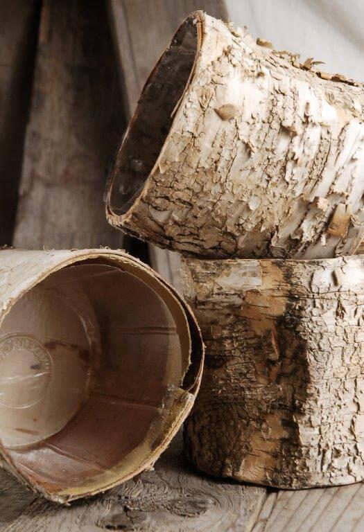 "Birch Bark Planter 4.75"" Pots w/ Plastic Liner"