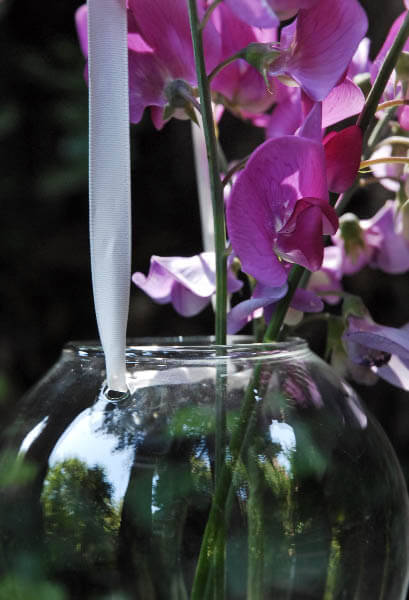 Hanging Teardrop Glass Vase