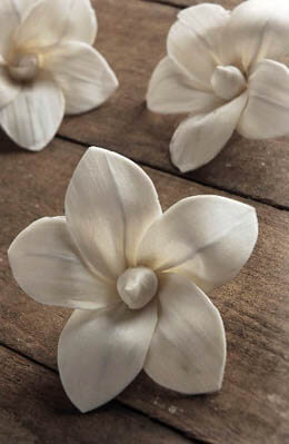 Sola Lily Flowers 3in 3pc