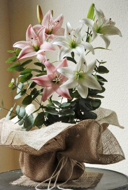 Burlap Pot Wrapping 24 x 24in Ivory/Natural