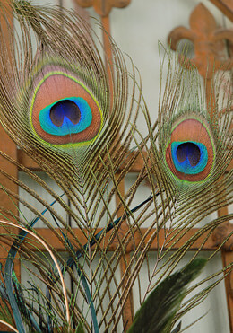 6 Peacock Feathers  Wired 24in