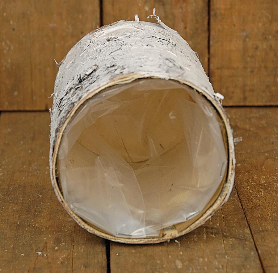 White Birch Bark Cylinder Vase 6in