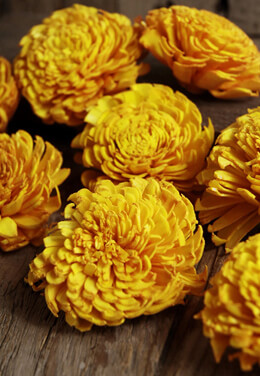12 Sola Flowers Butterscotch Carnations