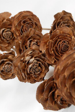 10 Cedar Wood Roses Floral Picks 16""