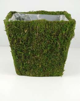 "Moss Covered Flower Pot Planter Square 8 square x 7"" tall"