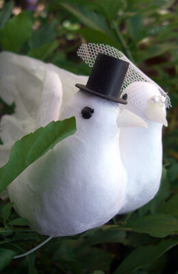 Wedding Cake Toppers Feathered Bride & Groom Doves