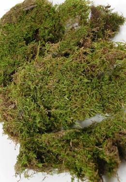 Moss Sheets 1.5oz