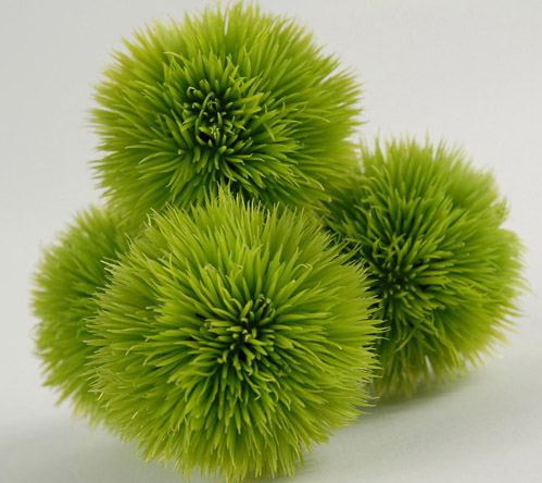 4 Green Allium Grass Balls 2 5in
