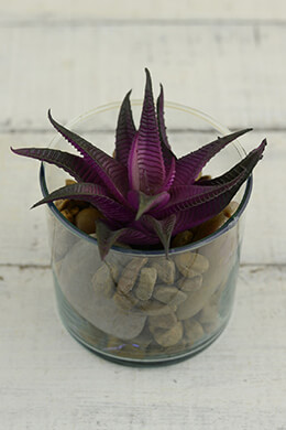 Artificial Natural Touch Purple Agave Pick 6x4