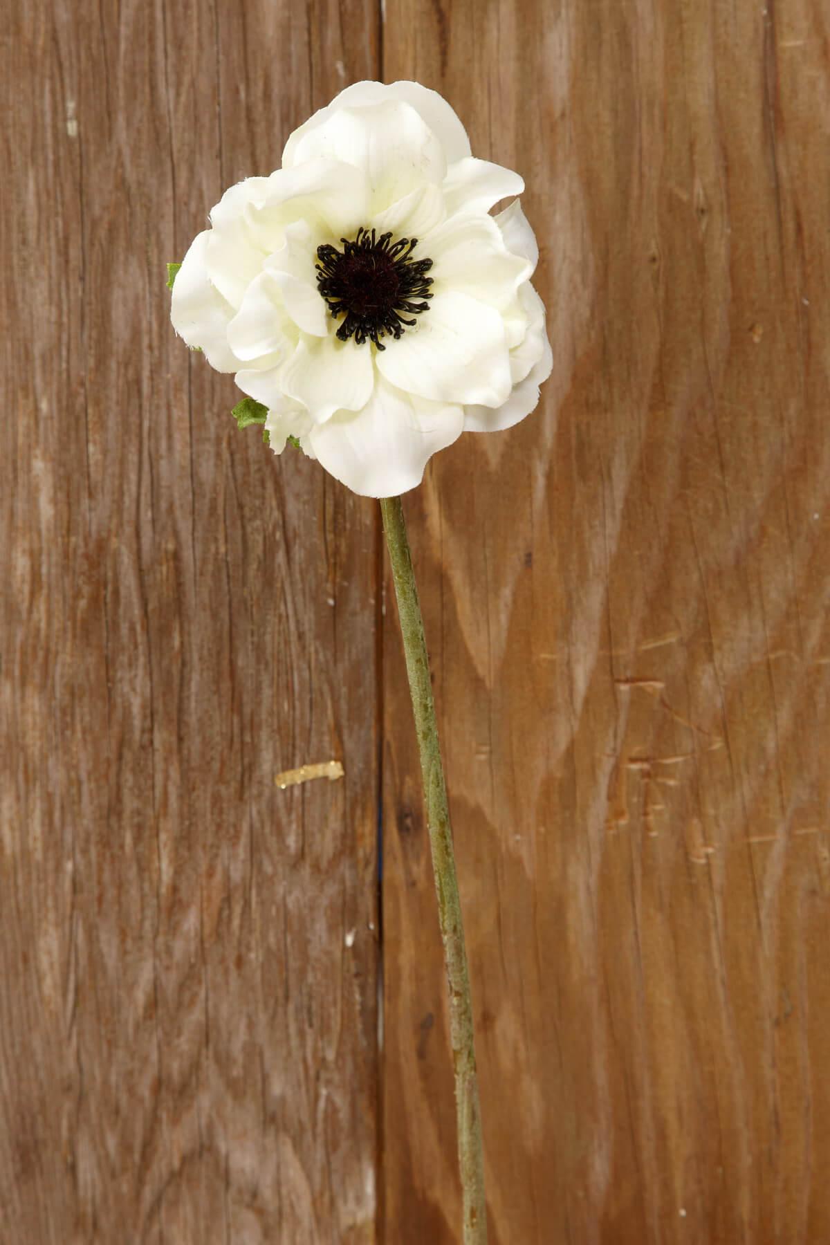 Silk flower stems and sprays cream white silk anemone flowers 15in mightylinksfo