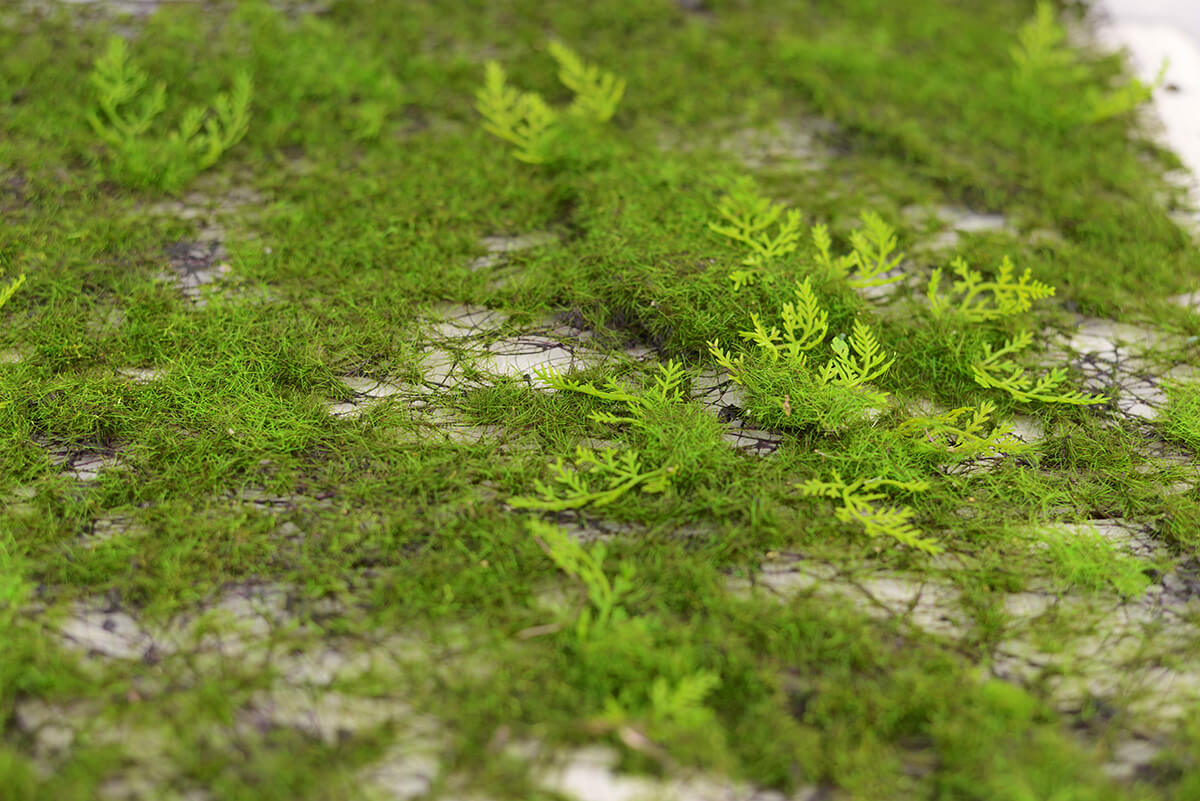 Artificial Moss Amp Fern Place Mat 20in