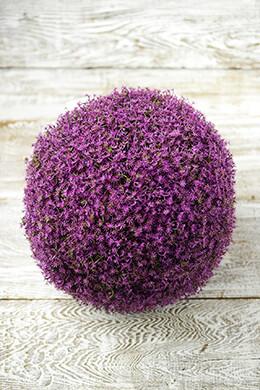 "Purple Alium Flower Balls 11"", Wedding Decorations"