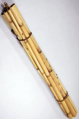 Watercane Bamboo Poles 20 in. Pack of 12