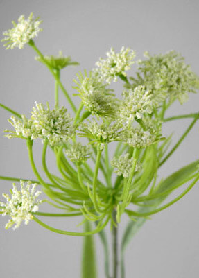 Queen Anne's Lace Artificial 26in