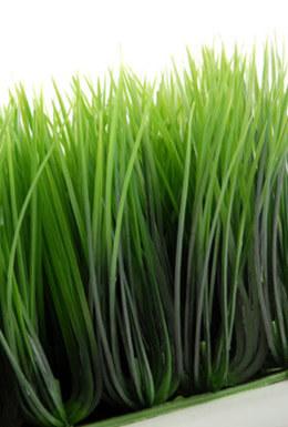 Wheat Grass Mats 10.5in Square Interlocking