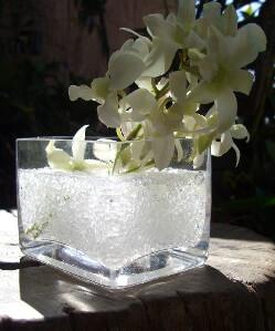 Garden Splendor Colorfill Vase Filler 1lb-White