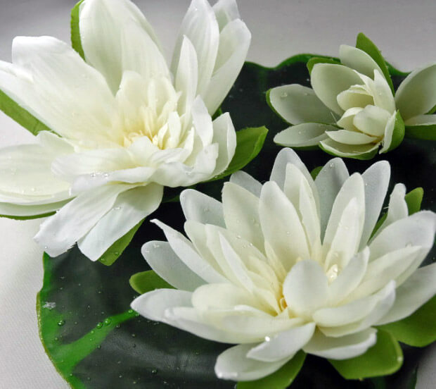 Floating Water Lily with Water Drops Cream 9 Inch, 3 Flowers