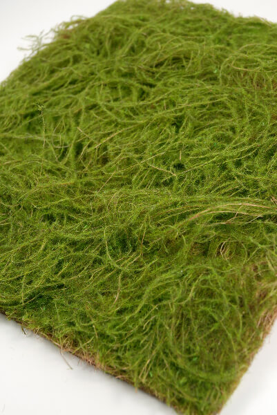 Square Water Sphagnum Moss Sheet Green 14x14