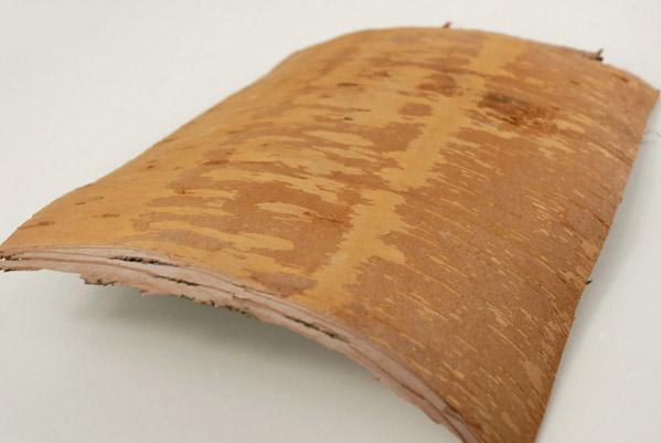 Birch Bark Flat 8x10in