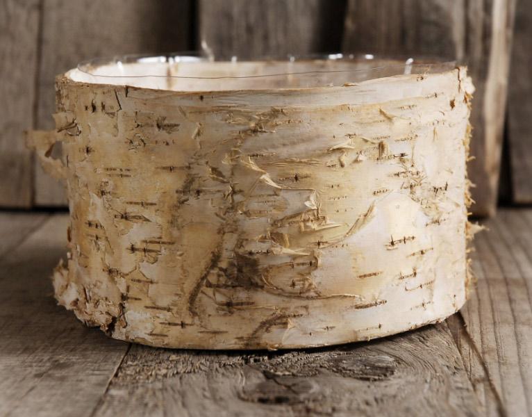 Birch Bark Planter Pot 6.5x 3.5 Inch
