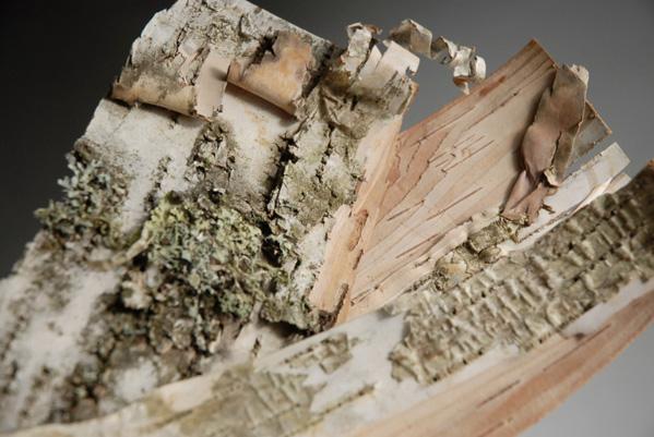 "Natural Birch Bark 6-12"" Long Pieces"