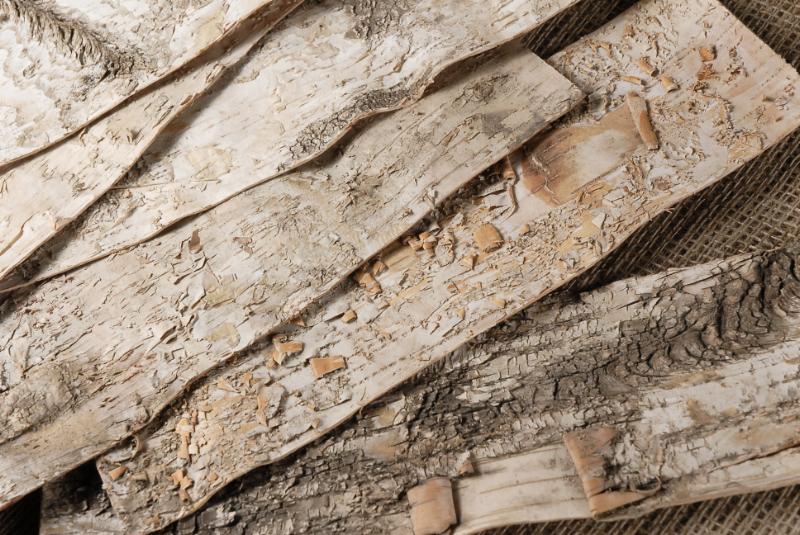 Birch Bark Sheets