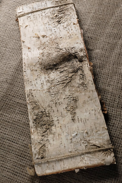 6 Natural Birch Bark 20 x7 Strips