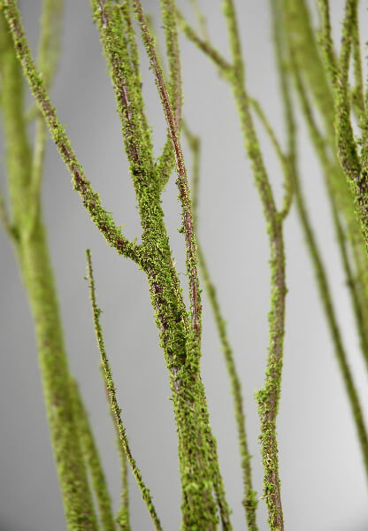 Birch Branches Moss Coated 4.5' (5 branches/ bunch)
