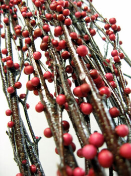 Natural Birch Branches Red Berries 4 Feet ( 4- 5 branches)