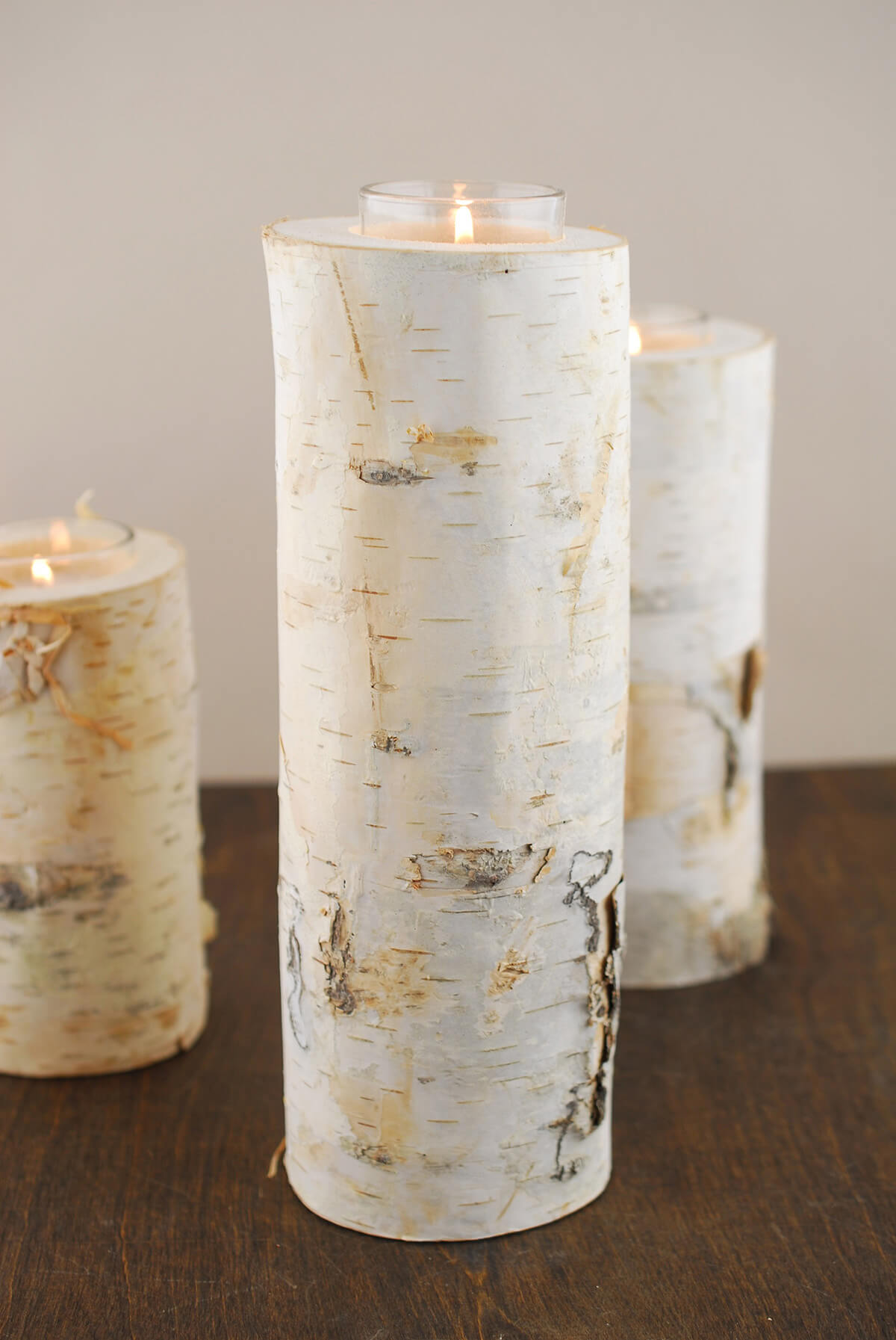 10 Quot Natural Birch Tree Branch Candle Holders