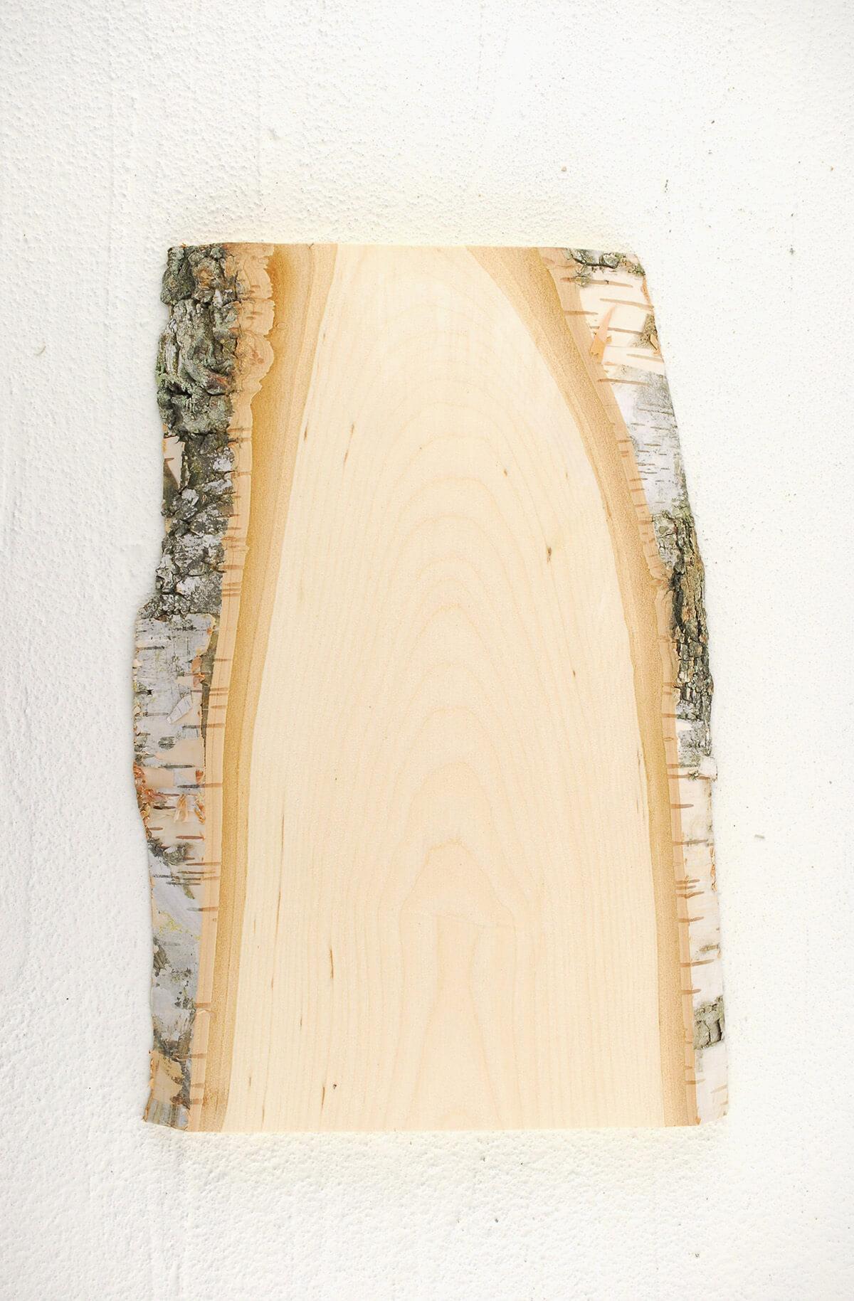 Birch plank in