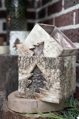 2 Birch Tree Pots 4.75'' x 5.5''
