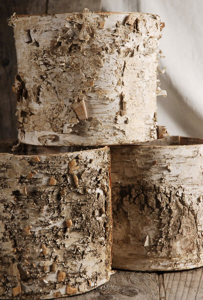 Birch Bark Planter w/ Plastic Liner  7x6