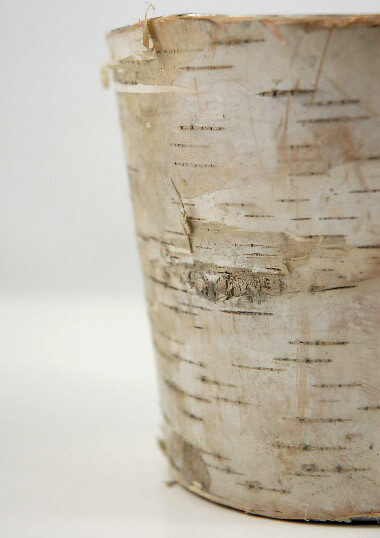 Birch Bark Covered Zinc Planter Vase  5in