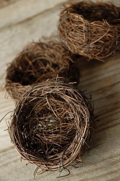 9 3 Inch Natural Twig Tiny Bird Nests Bulk Buy