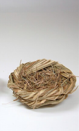 Tiny Grass Bird Nests (Set of 6)