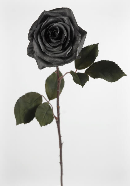 Black silk roses for How to make black roses