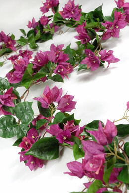 Bougainvillea Garlands