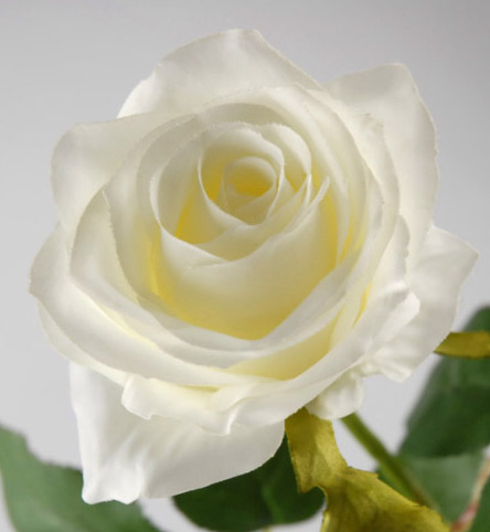 Cream White Long Stem Silk Roses 27 Quot