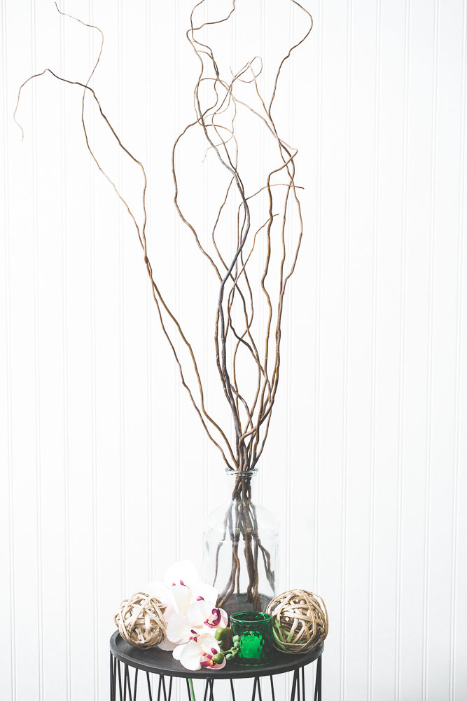 Natural Curly Willow Branches 26-30in