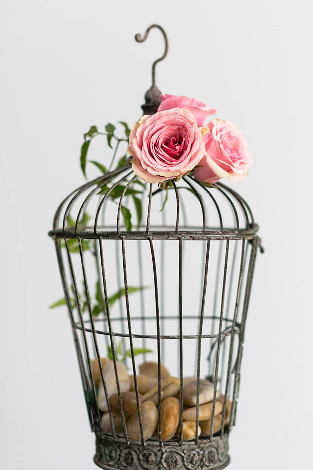 Decorative Birdcages|Bird nests & more|SaveOnCrafts