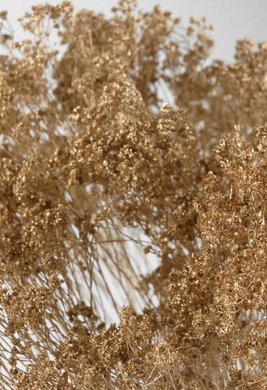 Metallic Gold Broom Bloom Branches 3oz Bunch (20 branches) 28in