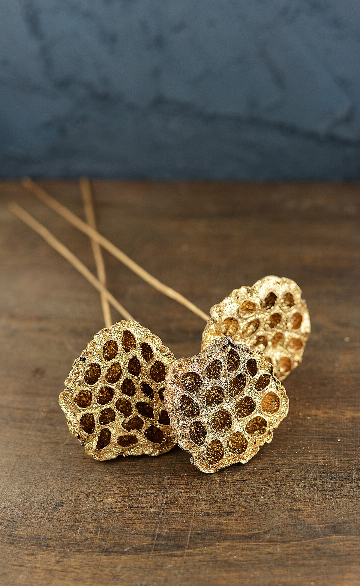 Gold Metallic Natural Lotus Pod Stems Pack Of 3