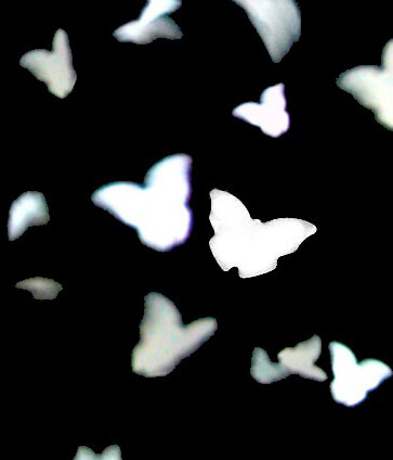 Butterfly Confetti Eco-Friendly | Pack of 350