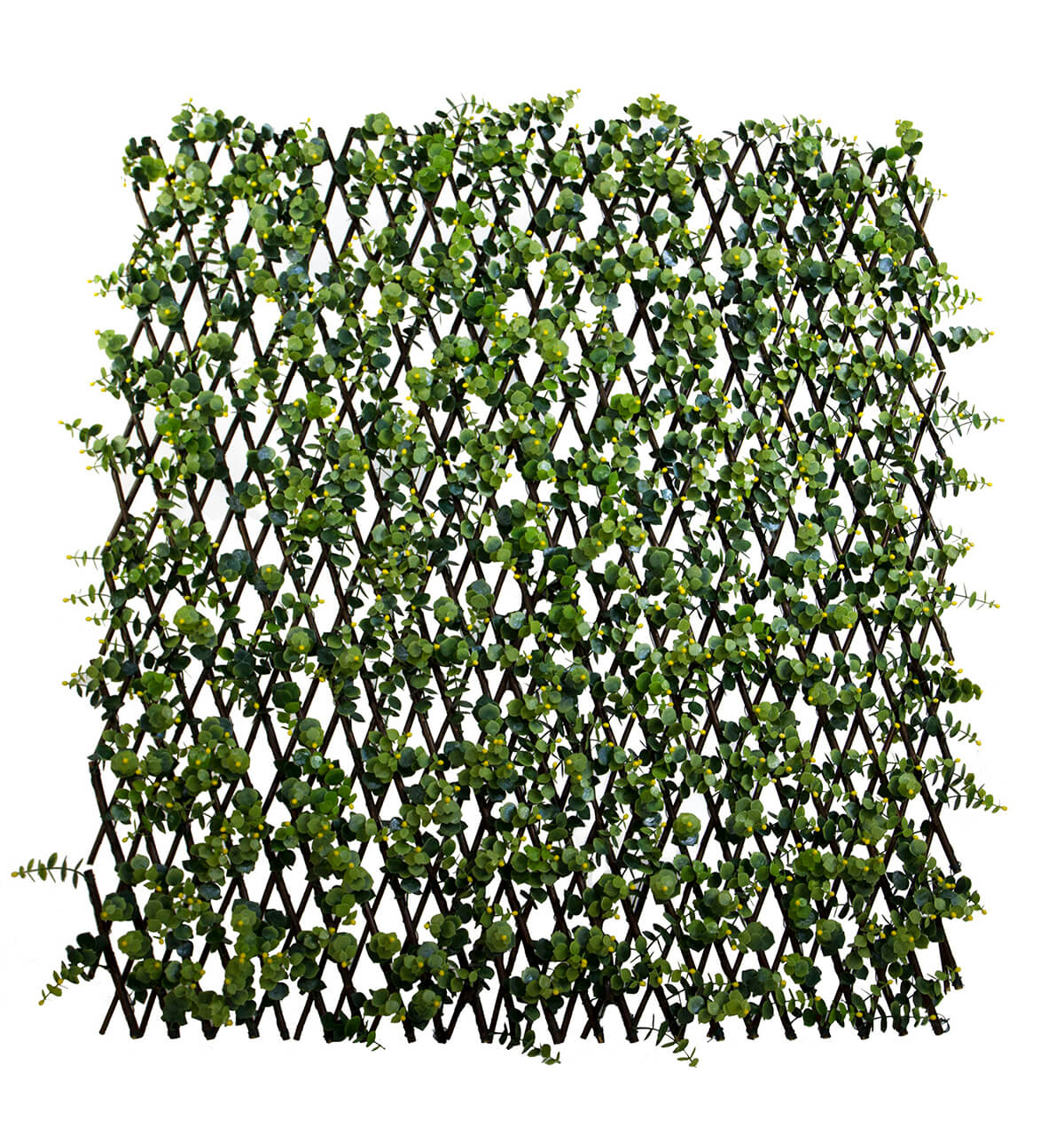 trellis ilex natural willow yellow berries 78 x 39