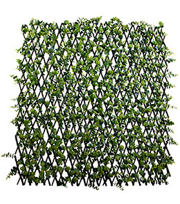 "Expandable Trellis  Ilex, Natural Willow & Yellow Berries 78"" x 39"""