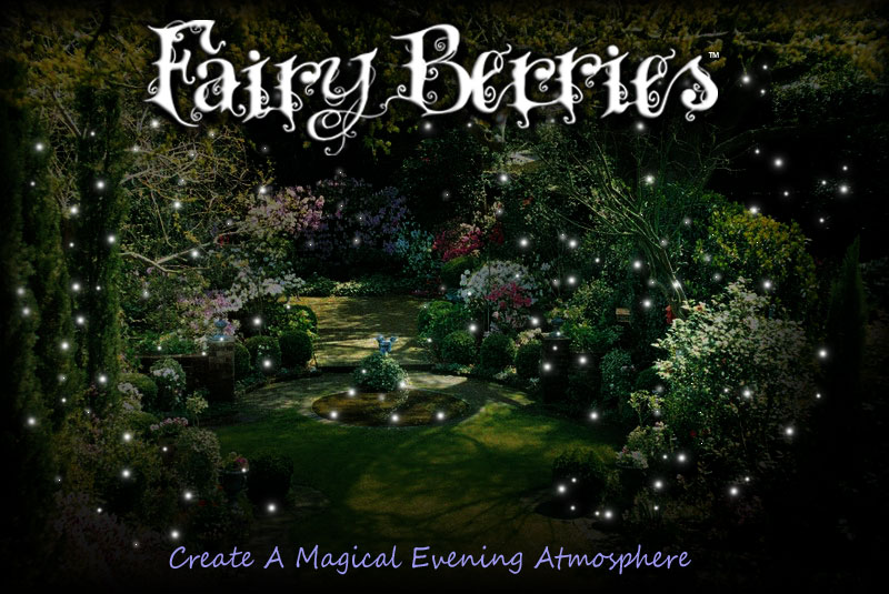 Fairy Berries Orange 10 Magical LED Lights
