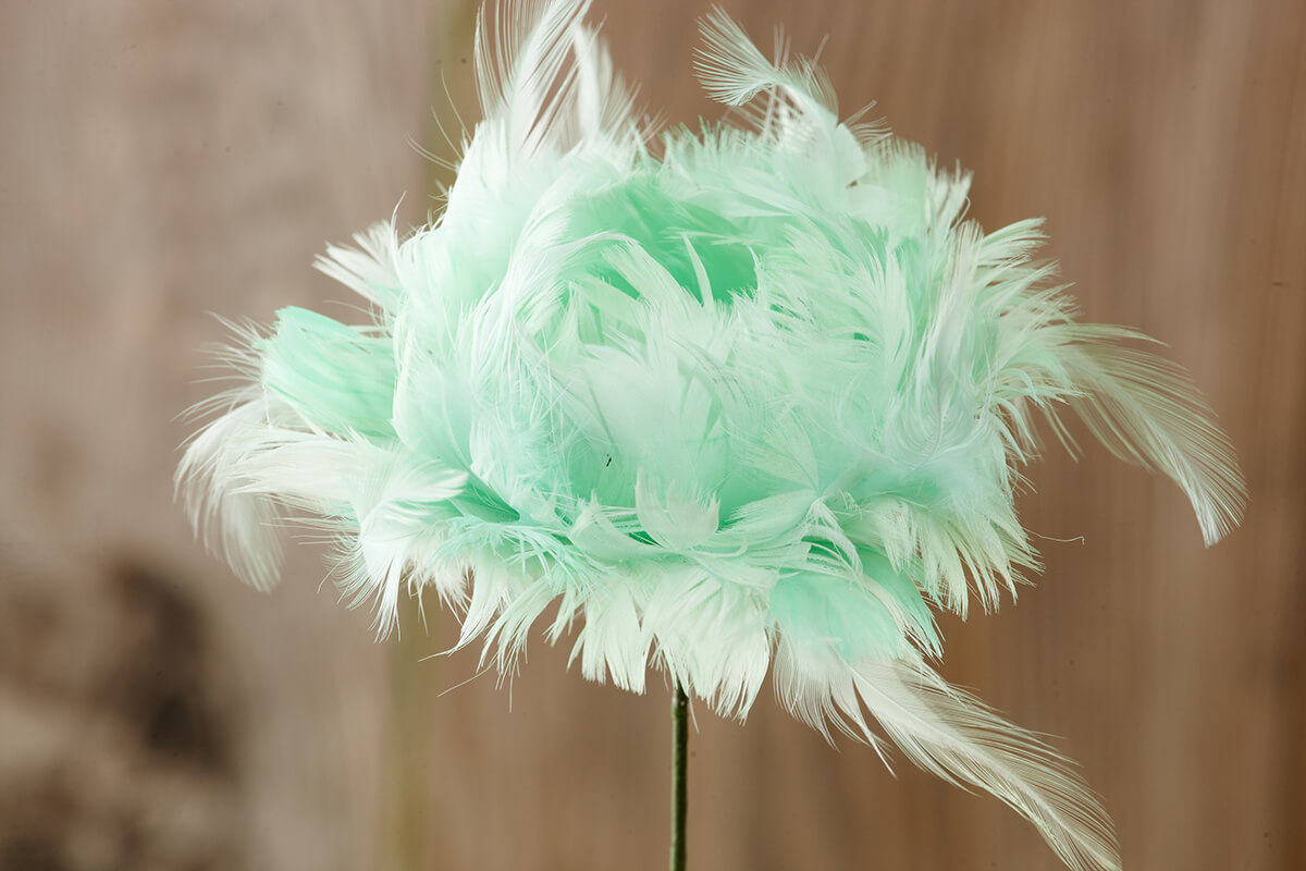 4 mint green feather flower tulips