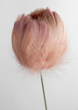 Feather Flowers on Wire Stem Apricot Taupe 18in
