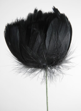 Black Feathered Flowers  18in